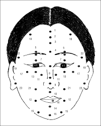 Chinese Face Mapping Chinese Fortune Telling Based On Face And Body Mole Positions A