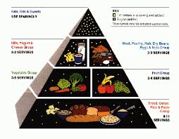 Light Foods To Eat Food Pyramid Atkins Diet Healthy Light Loos Weight Eat