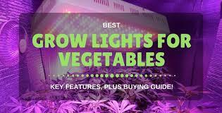 where to buy indoor grow lights best indoor grow lights for vegetables reviews buying guide