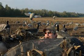 5 best ways to conceal your layout blind wildfowl