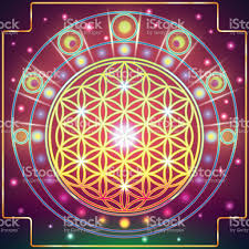 Flower Of Images - 100 flower of life wallpaper e8 lie group geometry symmetry