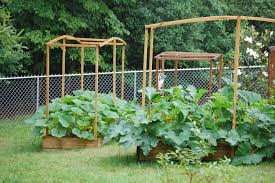 Vegetable Beds The Advantages Of Raised Vegetable Beds