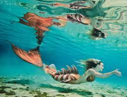 25 mermaid swimming ideas mermaid pics