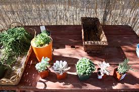 theme week u2013 vertical gardens and living art good to grow