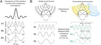 spatial cue reliability drives frequency tuning in the barn owl u0027s