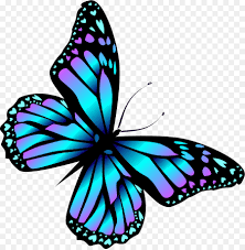 monarch butterfly blue blue butterfly png