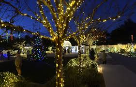 botanical gardens features high wattage holiday exhibit tbo com