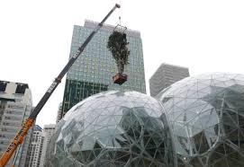 tree is hoisted into the spheres in milestone