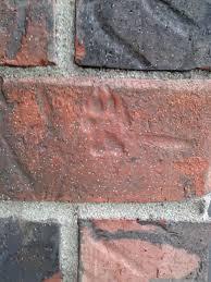 Brick Wall Meme - put me like snow peeling off brick wall
