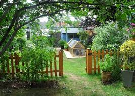 Keeping Free Range Chickens In Your Backyard Got A Garden Then You Can Keep Chickens Expert Care U0026 Advice