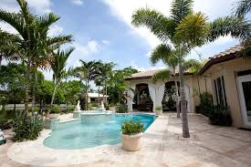 amazing outdoor artificial palm trees decorating ideas gallery in