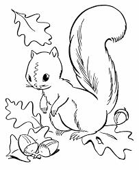 fall season coloring squirrel collecting acorns arts