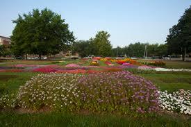 Barnhill Rock Garden by Cultivar Trial Gardens Chadwick Arboretum U0026 Learning Gardens