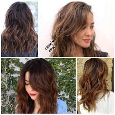 light brown hair color ideas appealing brown u best hair color ideas trends in for unique colored