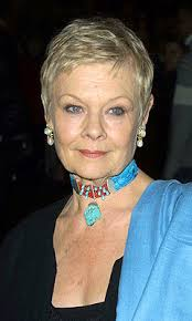 how to get judi dench hairstyle judi dench hairstyle haircuts for women