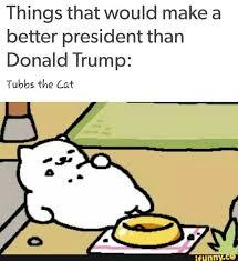 Meme Neko - 92 best neko atsume images on pinterest neko atsume cats and
