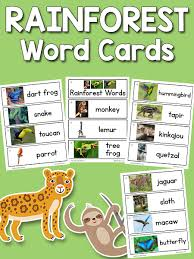 words cards rainforest word cards prekinders