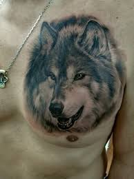 wolf black and grey on chest