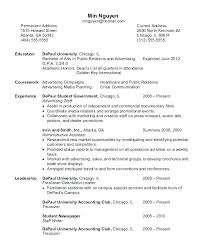 curriculum vitae sles for experienced accountants oneonta technical trainer resume