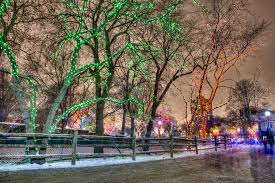 Zoo Light Chicago by Twinkling Photos From Zoolights At Lincoln Park Zoo