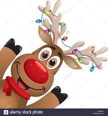 rudolph nosed reindeer stock photos rudolph