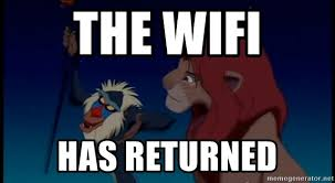 Rafiki Meme - the wifi has returned rafiki meme generator