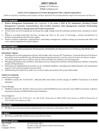 Profile Sample Resume by Project Manager Resume Samples Sample Resume For It Project