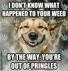 Memes Jokes - 4 20 humor the best weed jokes and memes for 4 20