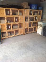 Sale Rabbit Hutches Rabbit Guinea Pig Hutches For Sale Peterborough Cambridgeshire