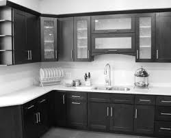 Kitchen Glass Door Cabinets Door P P Amazing Double Door Cabinet Frightening Double Glass