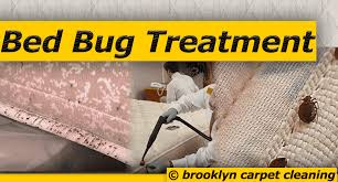 Bed Bug Cleaning Services Bed Bug Treatment Brooklyn