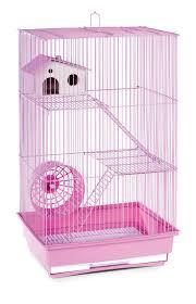 best 25 small animal cage ideas on pinterest animal cage rat