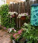 แบบสวนสวย จัดสวน ใน