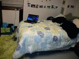 cute dorm bedding room cheap duvet covers museosdemolina info