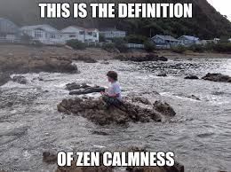 Meme Defintion - this is the definition of zen calmness meme
