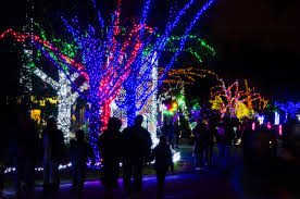 Home Decorators Coupon 15 Off by 10 Seattle Area Holiday Light Displays To Visit This Season