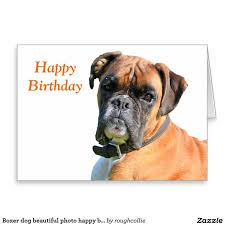 boxer dog sayings 96 best boxers
