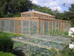 18 best fruit cage images on pinterest veggie gardens fruit and