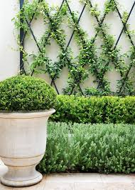 Landscaping Ideas For Small Front Yards Best 25 Front Yard Hedges Ideas On Pinterest Hedges Front