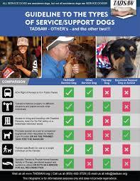 tadsaw u2013 train a dog save a warrior