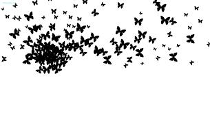 black butterfly jpg r cbell author