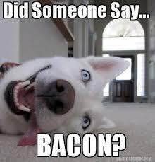 Bacon Meme Generator - meme creator did someone say bacon meme generator at