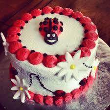 the 25 best ladybug smash cakes ideas on pinterest ladybug