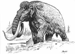 woolly mammoths mastodons crystalinks