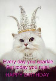 Cat Happy Birthday Meme - best birthday quotes birthday memes for her friends omg quotes