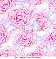 beautiful wrapping paper wrapping paper patter stock images royalty free images vectors