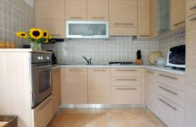 Kitchen Cabinet Doors Replacement Kitchen Cabinets For Mobile Homes Techethe Com