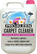 Carpet Cleaning Solution Ebay