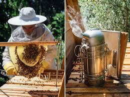 backyard beekeeping blog page 6 bee built