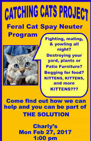Baja Spay And Neuter Foundation U2013 Sterilize Your Pets